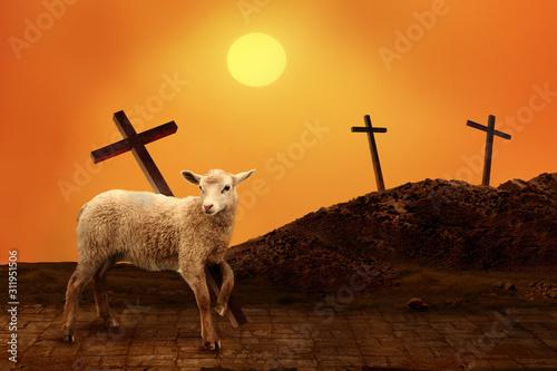 Lamb of God. The atoning sacrifice of Jesus Christ Canvas Print