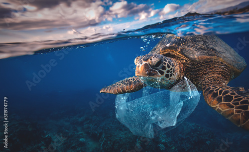 Foto Underwater animal a turtle eating plastic bag, Water Environmental Pollution Pro