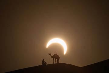 Annular solar eclipse in desert with a silhouette of a dromedary camel. Liwa desert, Abu Dhabi, United Arab Emirates.