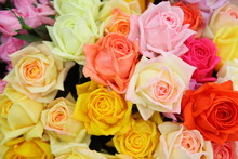 Artificial Rose Flowers Mixed ...