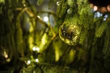 Details Of Christmas Tree Duri...