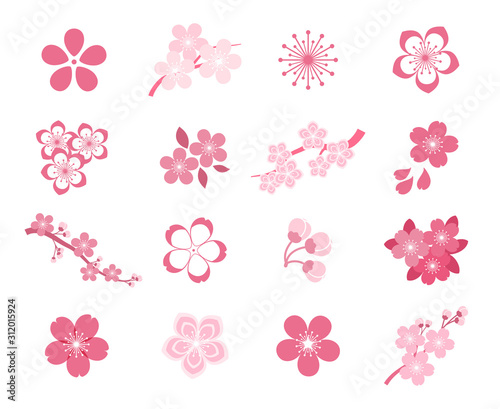Photo  Cherry blossom icon set