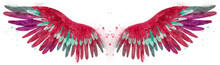 Beautiful Watercolor Magic Bright Pink Red Wings With Green And White Feathers