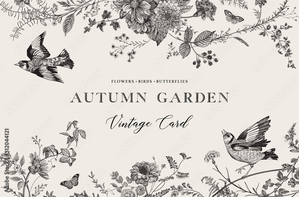 Fototapeta Autumn Garden. Vector horizontal card. Flowers, birds, butterflies. Black and white