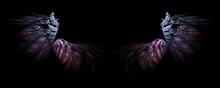 Abstract Fantasy Fairy Wings O...