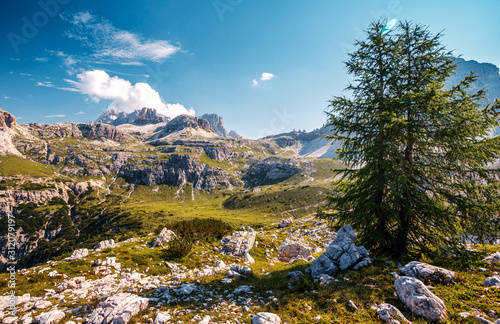 Wall mural - Fairytale mountain valley of Tre Cime di Lavaredo National park under sunlit. Amazing Natural background. Impressive Wild area. Panoramic view   at Dolomites Alps. popular hiking destination in world