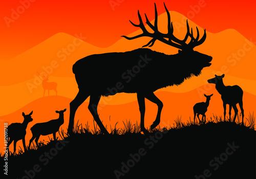 A vector silhouette of a large bull elk bugling. Tapéta, Fotótapéta