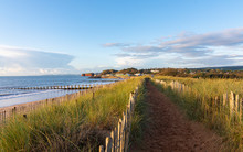 Coastal Footpath On Dawlish Wa...
