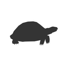 Tortoise Icon Vector Illustration For Graphic Design And Websites