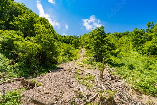 春の急峻な崖からの落石 Fototapet