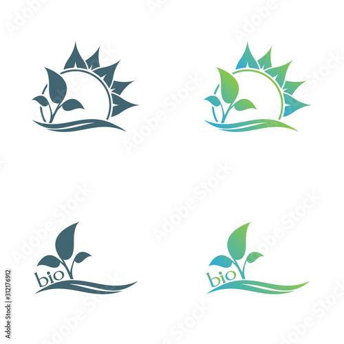 Abstract leaf logo vector symbol. Foliate symbol design. Fototapet