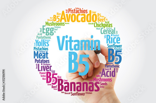 Vitamin B5 word cloud collage, health concept background Canvas Print