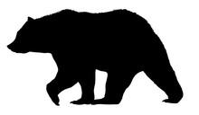 Vector Bear Silhouette Isolate...
