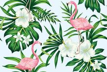 Tropical White Hibiscus Plumer...