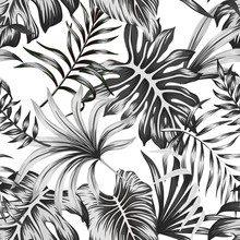Tropical Black And White Palm Leaves Seamless Pattern White Background. Exotic Jungle Wallpaper.