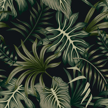 Tropical Green Palm Leaves Floral Seamless Pattern Black Background. Exotic Jungle Wallpaper.