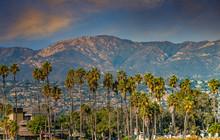 Palm Trees And Santa Ynez Mountains In Santa Barbara
