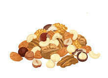 Heap Of Different Nuts Isolated On White Background. Pile Of Almond, Walnut, Pecan, Macadamia, Cashew, Brazil Nut And Hazelnut. Vector Illustration Of Organic Healthy Food In Cartoon Flat Style.