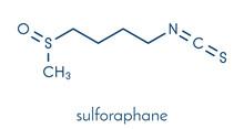 Sulforaphane Cruciferous Veget...
