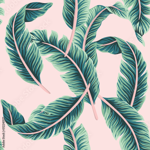 Tropical vector banana leaves floral seamless pattern pink background. Exotic jungle wallpaper. Wall mural