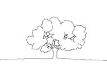 木の手描き線画