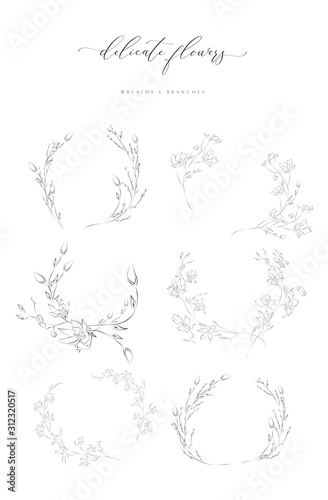 Obraz Collection of delicate line drawing vector floral wreaths frames. hand drawn delicate flowers, branches, leaves, blossom. Botanical illustration. Leaf logo - fototapety do salonu