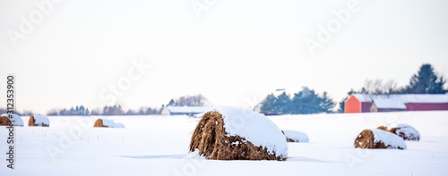 Round hay bales covered with snow in a farm field panoramic Wallpaper Mural
