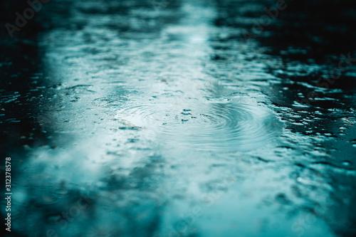 Fototapeta Wasser obraz