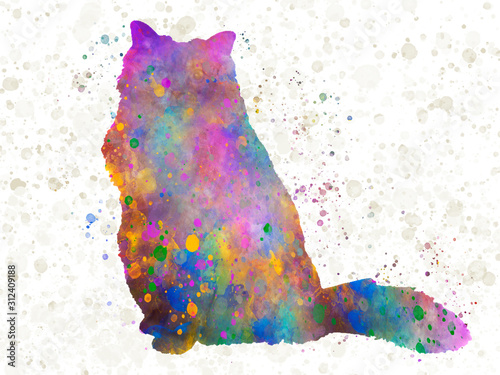 Photo Burmese sacred cat 09 in watercolor