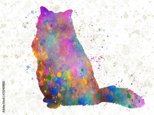 Fotografie, Obraz Burmese sacred cat 09 in watercolor