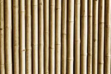 Brown bamboo stick wall. Asian natural jungle fence background.