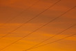 canvas print picture - Silhouette of electric wires on a sunset background