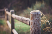Wooden Fence In Nature Setting