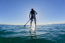 Surfer Stand Up Paddle Surfing Surfboard Silhouetted Rear Water Photo Ocean Blue Sky Landscape