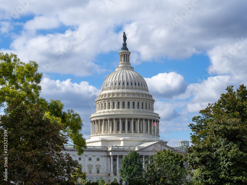 Washington DC, District of Columbia [ United States US Capitol Building, archite Wallpaper Mural