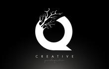 Letter Q Design Logo With Crea...