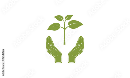 Fototapeta Hands with plant sprout isolated on white background. Vector symbol of agriculture. Save planet nature environment. Ecology concept. obraz