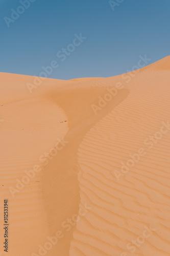 Landscape Desert of Oman #1
