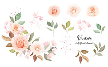 Flowers Vector Collection. Sof...