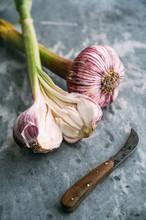 Food: French Purple Garlic Bulbs