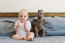 Dinosaur And Baby Applause
