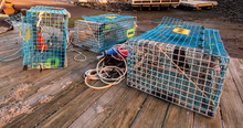 Maine Lobster Cages At Kittery...