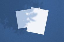 Blank White Vertical Paper Sheet 5x7 Inches With Tree Shadow Overlay. Modern And Stylish Greeting Card Or Wedding Invitation Mock Up. Color Of The Year 2020 Classic Blue