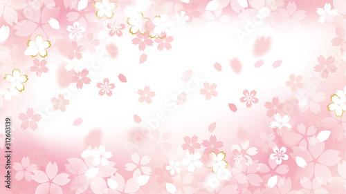 Photo 桜のイラスト