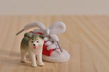 秋田犬と運動靴