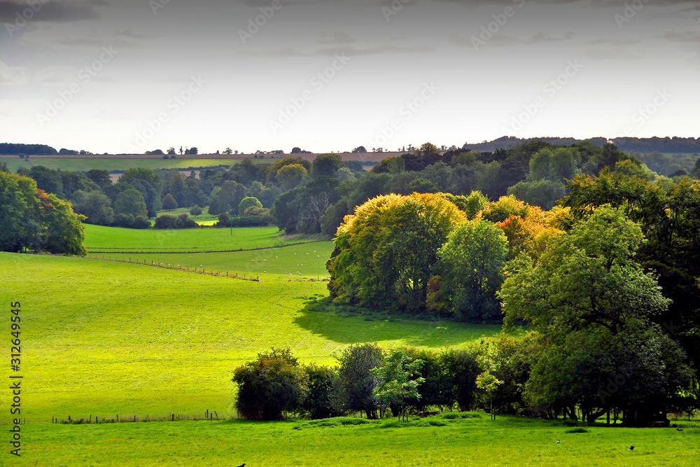 Fototapeta South Downs Hinton Ampner a stately home near Alresford Hampshire England UK