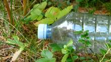 The White Cap Of The Plastic Bottle