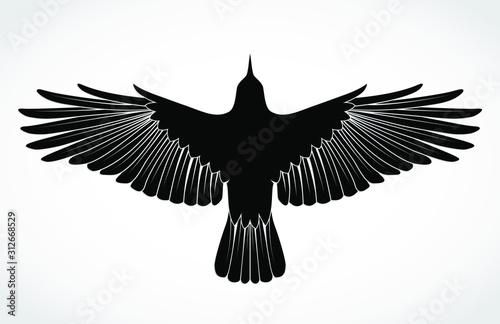 Fotografiet crow silhouette illustration