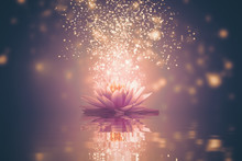 Abstract Background With Lotus...