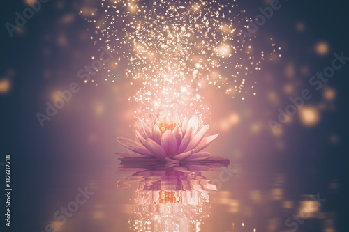 Abstract background with lotus flower Wallpaper Mural